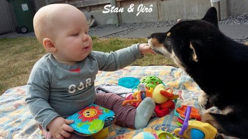 Enfants ,bébés et un shiba inu