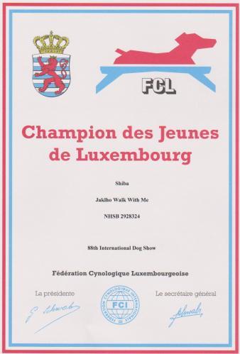 shiba champion des jeunes luxembourg