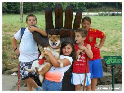 Shiba et enfants
