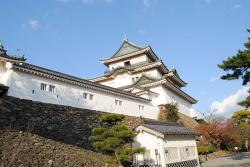 -wakayama-castle-2011-kuruwa.jpg