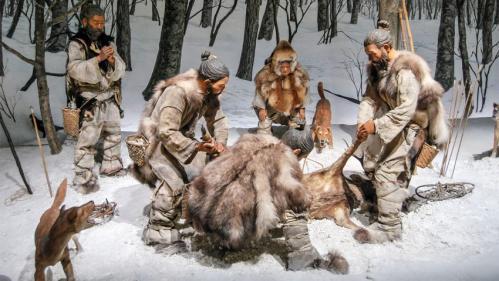 shiba et chiens de chasse dans la préhistoire