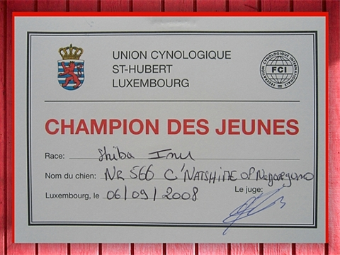 Natsu Hime champion jeune luxembourg