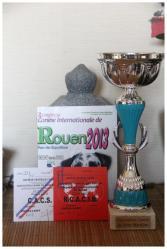 Show Rouen