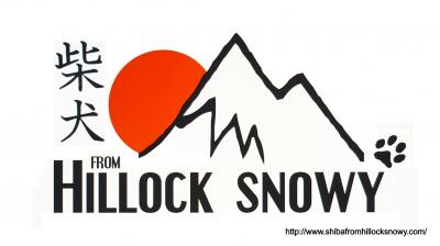 Logo shiba inu from Hillock Snowy