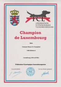 Champion du Luxembourg 2014 Masaru