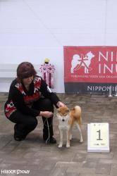 Kitai Nippon show