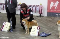 nippon show Masaru