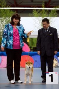shiba kitai et Mr Bessho satoshi BoB nippo show