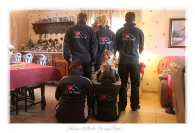 Team shiba hillock Snowy