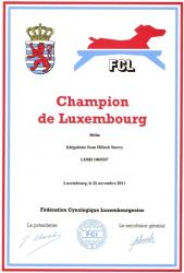 Champion Luxembourg