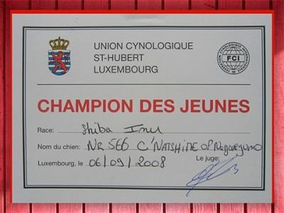 Natsu Hime champion jeune luxembourg